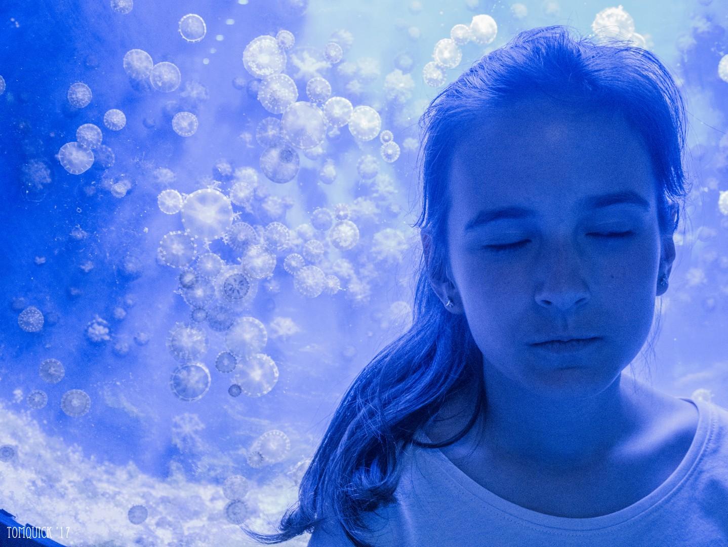 Kék álom
