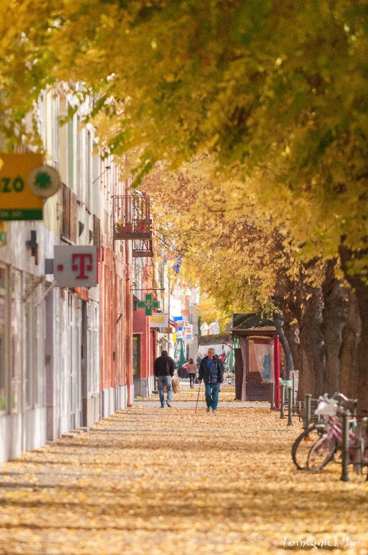Őszi városkép